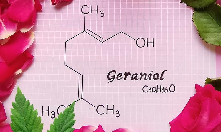 geraniol chemical structure