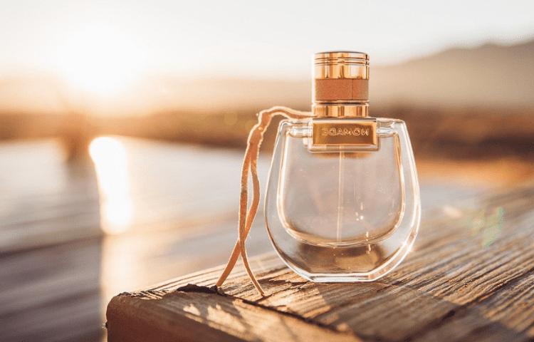 Bergamot: its amazing benefits and exquisite aroma 1