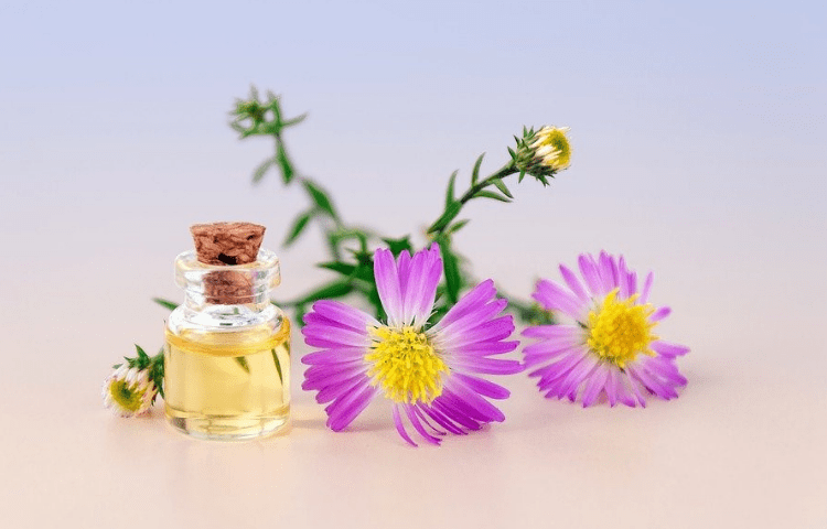Perfume tips you need to know to make it last longer 2
