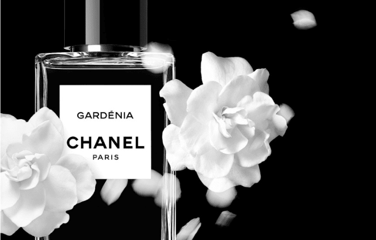Mademoiselle, and other Chanel perfumes that you'll love 10