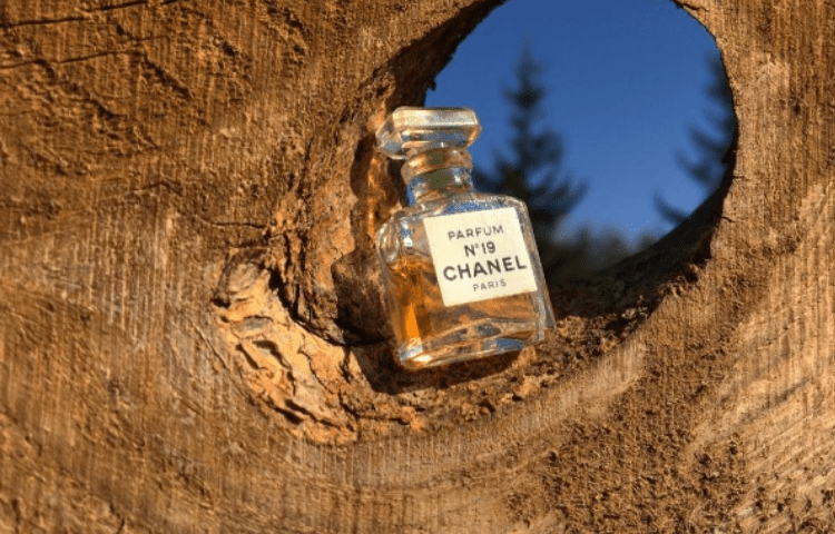 Mademoiselle, and other Chanel perfumes that you'll love 4