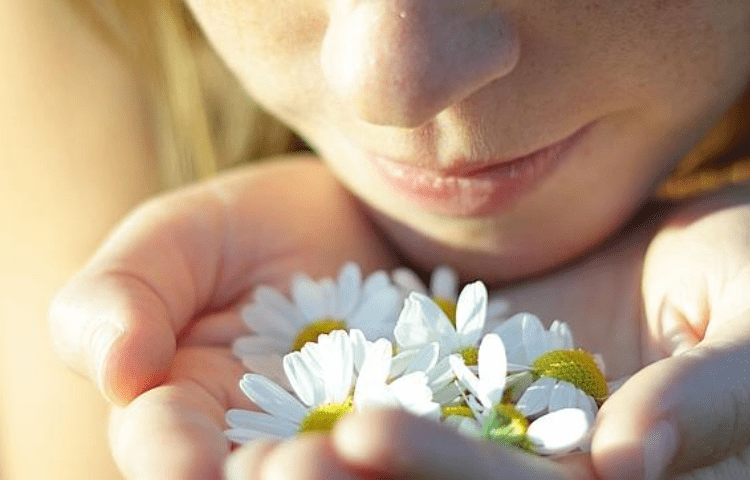 The amazing world of smells: the most common aromas 2